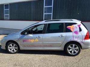 Fahrzeugbeschriftung für Paradogs